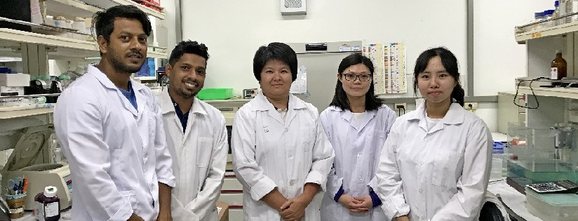 研究團隊秉持敵人的敵人就是我的朋友~慈大投入噬菌體研究。(20200717)
